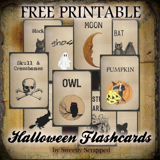 Picture Halloween Flash Cards