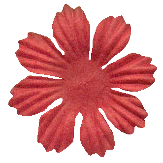 light pink prima style flower